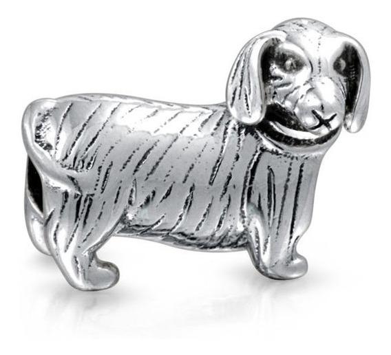 Caliente Perro Dachshund Cachorro Del Animal Doméstico Aman