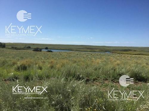 Imagen 1 de 12 de Campo - Estancia -chacharramendi - La Pampa - Estudio Del Agua - Ganadero