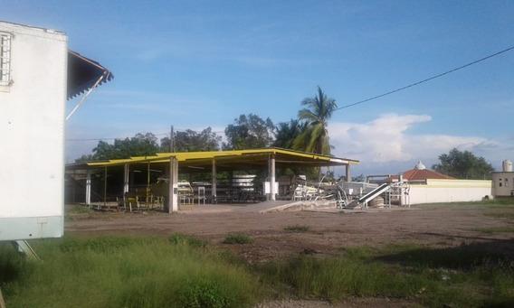 Empaque Hortalizas Navolato Sinaloa