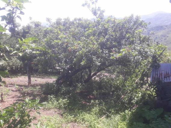 Terreno De 2.3 Hectáreas En Cariamanga Loja