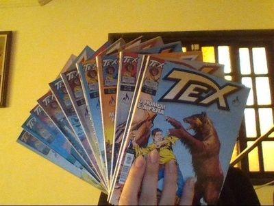 Revista Tex Coleção 274 A 283 Vários