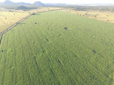 Fazenda A Venda Em Bodoquena - Ms (agricultura) - 865