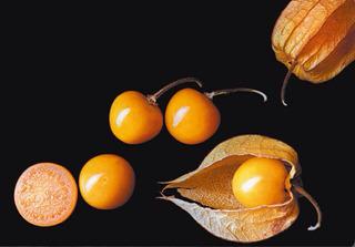 40 Semillas De Uchuva (physalis Peruviana) Raras Exóticas