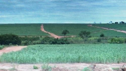Fazenda Para Venda Em Santa Vitoria-mg, Com 159,40 Alqueires Paulista, 385,74 Hectares Com 119 Alqueires Paulista Em Cana - Fa00130 - 69331139