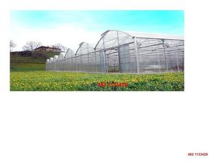 Invernadero Agricola 2500 M2