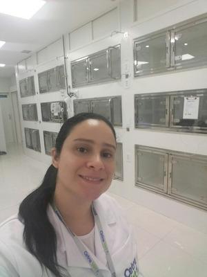 Atendimento Veterinário Domiciliar Rio De Janeiro