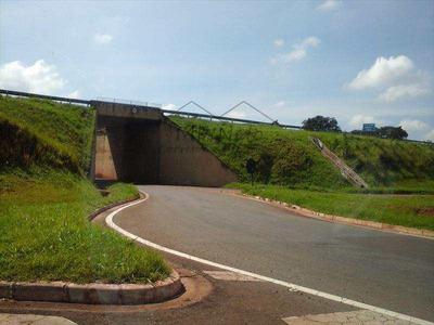 Área, Distrito Industrial, Pirassununga, Cod: 10124600 - V10124600