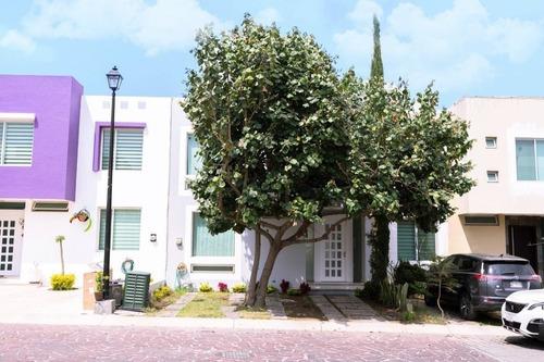 Departamento En Renta Coto Guarnición, Casa Fuerte
