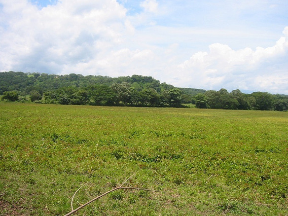 Terreno En Esparza