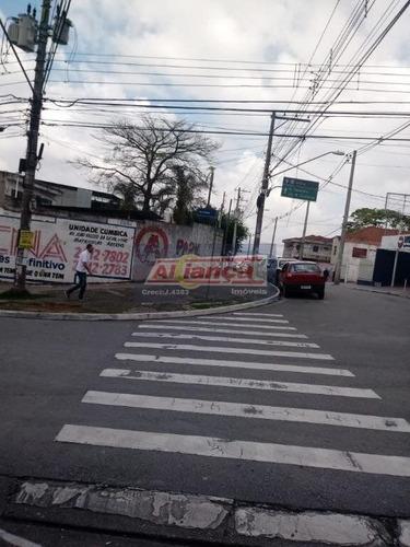 Terreno Residencial À Venda, Cidade Jardim Cumbica, Guarulhos - Te0269. - Ai7748
