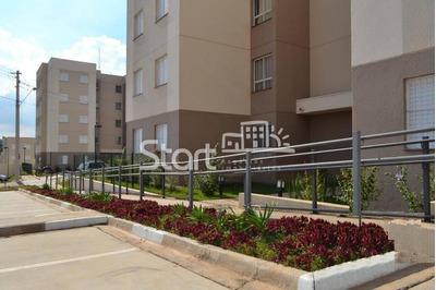 Apartamento À Venda Em Jardim Do Lago Continuação - Ap004210