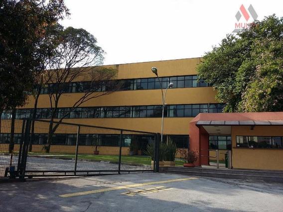 Galpão Industrial Para Locação, Vila São Silvestre, Barueri. - Ga0262