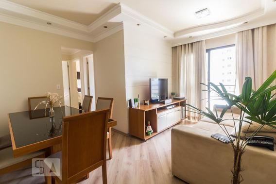 Apartamento Para Aluguel - Torres Tibagy, 3 Quartos, 67 - 892863369