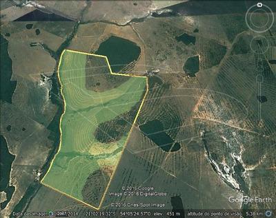 Fazenda Para Venda : Ref:020454.02 - 020454.02