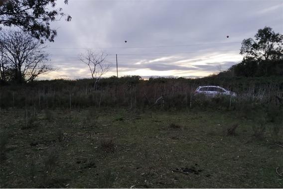 Campo En Venta La Plata