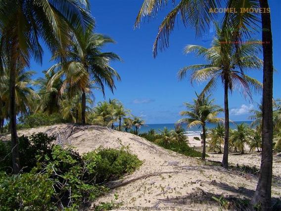 Terrenos Em Frente À Praia À Venda Em Conde/ba - Compre O Seu Terrenos Em Frente À Praia Aqui! - 1317720
