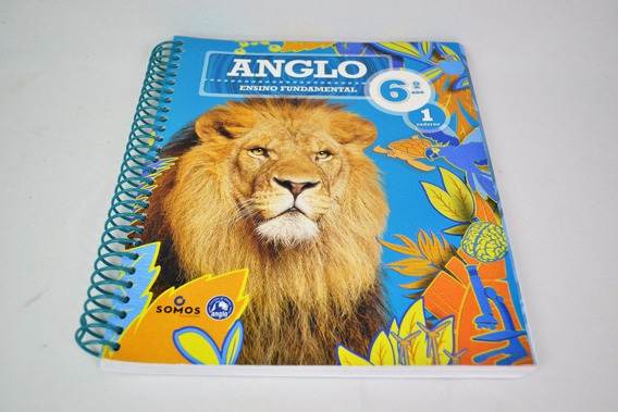 Apostila Anglo Ensino Fundamental 6 Ano Caderno 1 (novo)