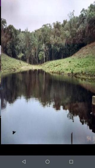Fazenda Em Rio Verde, Cananéia/sp De 0m² À Venda Por R$ 900.000,00 - Fa437181