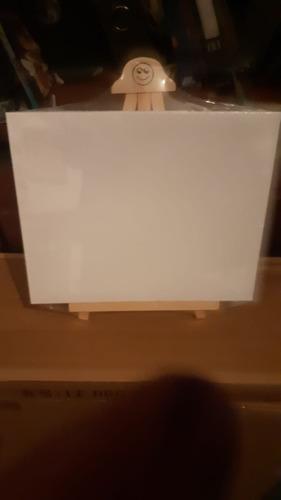 Imagen 1 de 1 de 5u Lienzos 20x15 Con Atriles