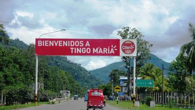 Venta De Terreno En Naranjillo - Luyando - Tingo Maria
