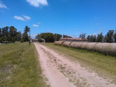 Campo Con Casco Antiguo A 31 Km De Montevideo Buen Acceso
