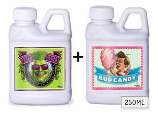 Combo Big Bud + Bud Candy Advanced Nutrients 250ml Floracion