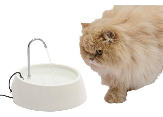 Fonte Bebedouro Aqua Mini Bivolt - Cães Gatos + Filtro Extra