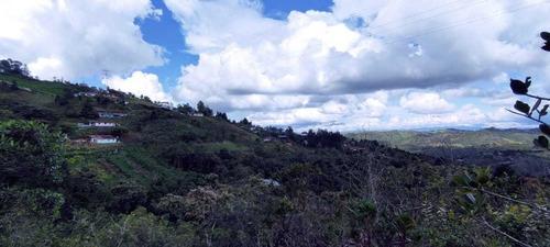 Lote Santa Elena