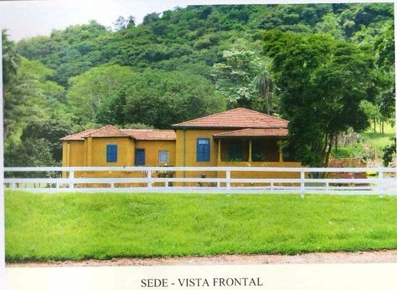 Fazenda Para Venda Em Pinhal /sp - Espirito Santo Do Pinhal - Fazenda Histórica - Fa00009