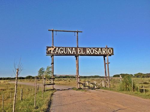 Chacra En Laguna El Rosario