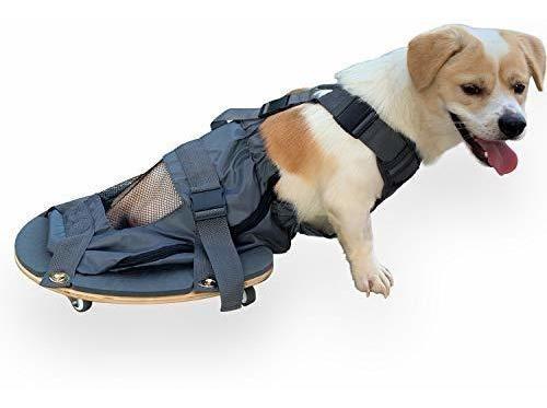Imagen 1 de 7 de Silla De Ruedas Para Patastraseras Perro Paralizado Protege