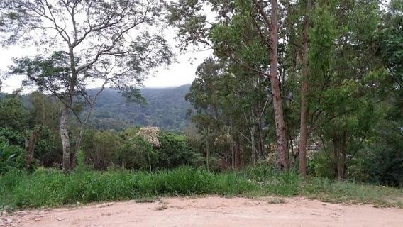 Rural Para Venda, 5 Dormitórios, Capixinga - Mogi Das Cruzes - 3304