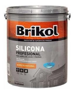 Brikol Ladrillos Silicona Base Agua Incoloro 20lt - Rex