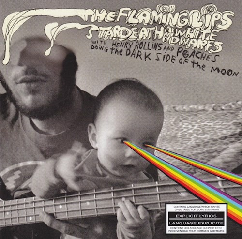 The Dark Side Of The Moon - Flaming Lips (cd)