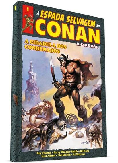 Livro A Espada Selvagem De Conan - Volume 1 Capa Dura