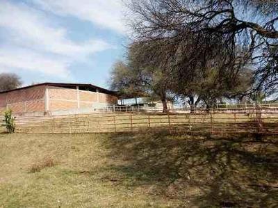 (crm-92-9631) Zacatecas Rancho 240 Hectareas Agricola Y Ganadero $123