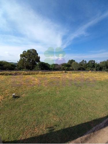 Terreno, Bosque Do Horto, Jardim Florestal, Jundiaí. - Te08913 - 69337651
