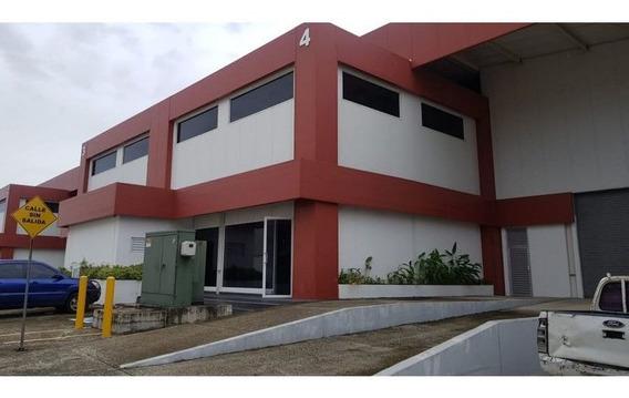 Galera En Alquiler En Panama -ligia Cod. 1328100