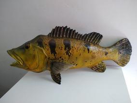 Escultura Peixe Tucunare Em Resina Poliester