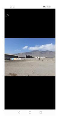 Arriendo De Terreno Sector Chimba Alto Compartido 3000mtr2 A