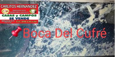 En Playa Boca Del Cufre Tenemos Propiedades P Venta Y Alquil