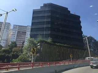 Renta Oficina Carlos Echanove Santa Fe Cuajimalpa