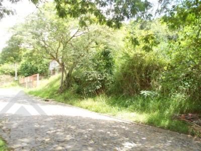 Terreno - Centro - Ref: 80768 - V-80768