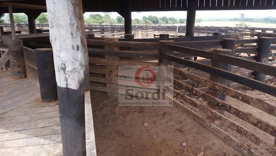 Fazenda Rural À Venda, São Sebastião, Altamira. - Fa0057