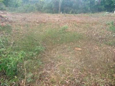 Terreno / Área Para Comprar No Roda De Pau Em Catas Altas/mg - 16491
