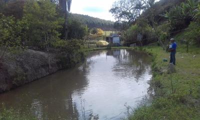 Chácara Perto Da Cidade Rica Em Água E Com Lago