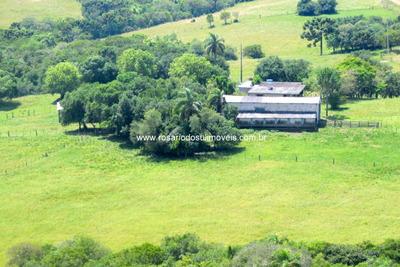 Fazenda Com 844 Hectares Em Santana Do Boa Vista - Rs