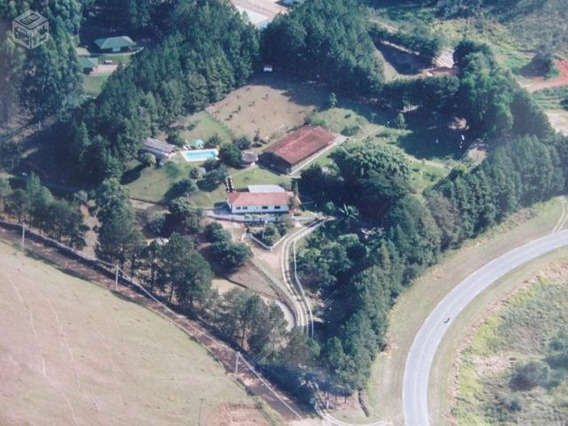 Rural Para Venda, 13 Dormitórios, Centro - Cunha - 184