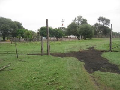 Campo Tres Isletas 475 Ha Dueño Vende