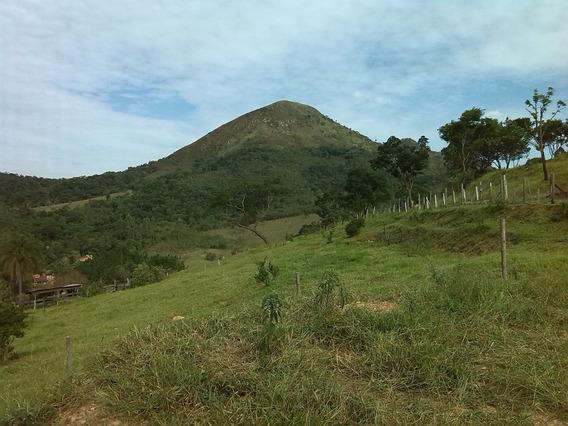 Terreno Em Sao Roque Altura Do Km 58 Da Rod. Castelo Branco